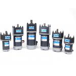 HS2561 10-250W  Gear Motor Worm Gear Gearbox Worm Gear Reducer RV Motor DC 12V/24V